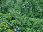 Rainforest Aerial Tram, Braulio Carrillo, Costa Rica
